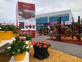 Flower Trial 2018